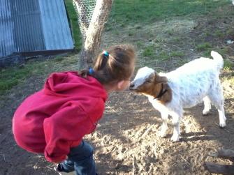Farm Girl and Will's Last Hongi