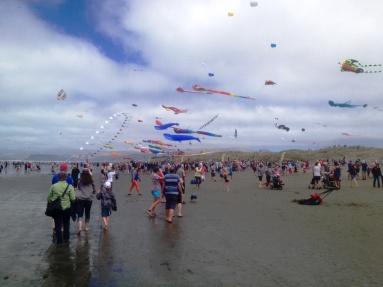 kite day 2015