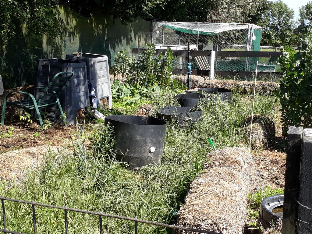 Sheep Paddock Garden